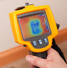 Thermal Camera Pest Report